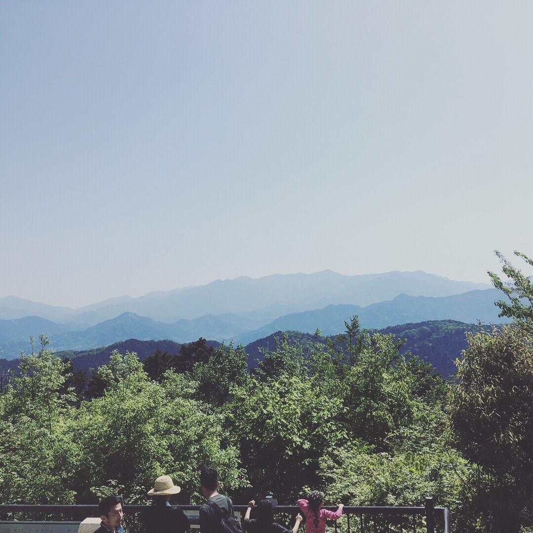 ゆっくり歩いて高尾山登頂しました。