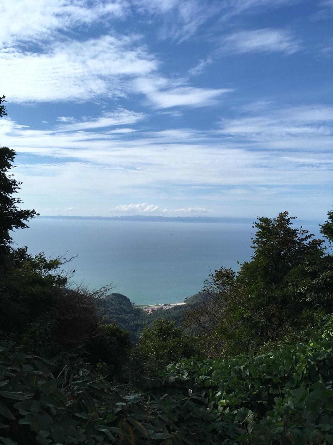 山から海を一望