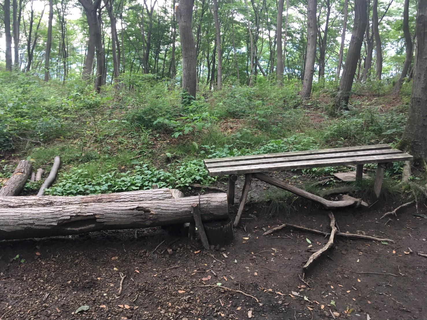 木のベンチが3台ほどあります。