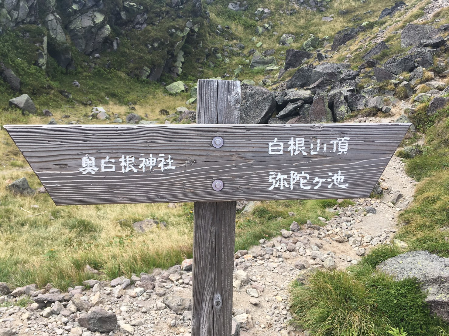 もうすぐ山頂です。