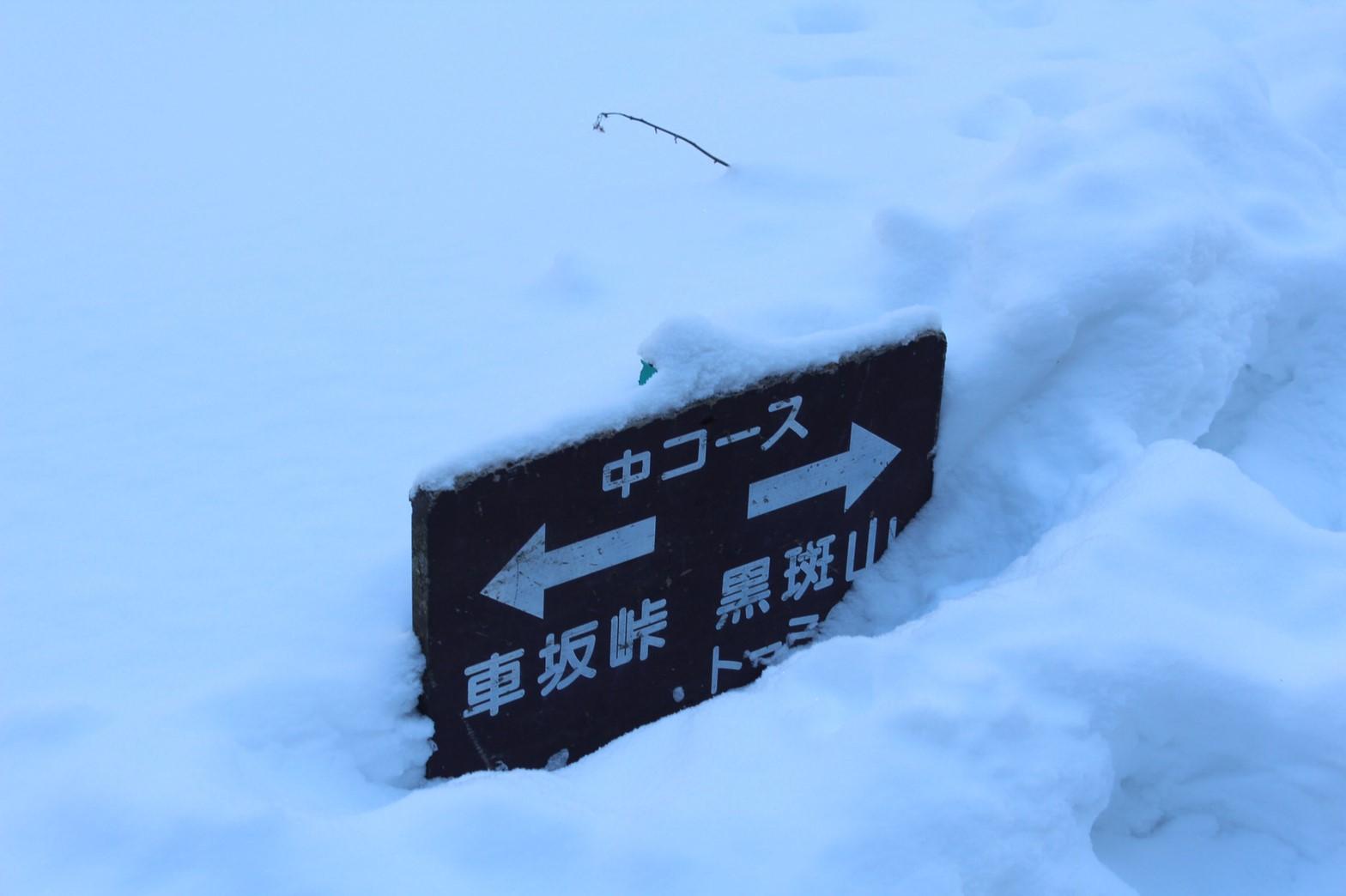 看板が雪で埋もれてます。